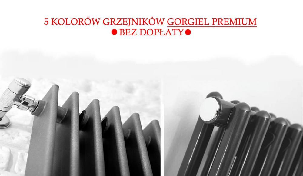 Gorgiel promocja na kolory z grupy premium